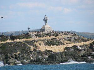 Colonie d'oiseaux marins à la Razade d'en Haut, l'une des propriétés de la Société Provancher