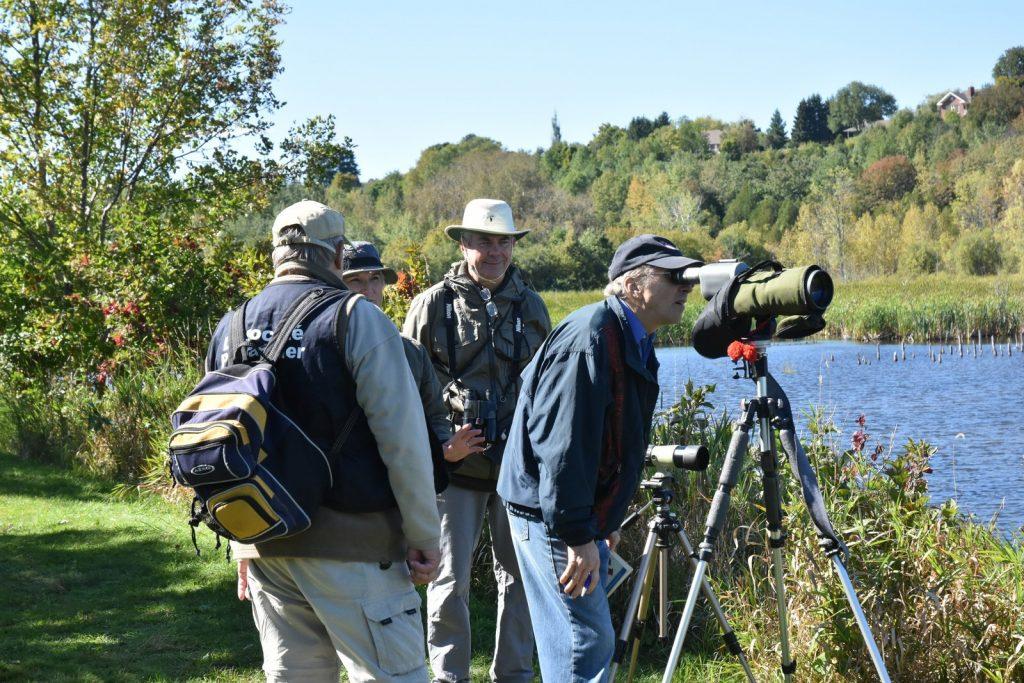 Activité du 24 septembre 2016 à la Réserve naturelle du Marais-Léon-Provancher (Photo: Robert Patenaude)