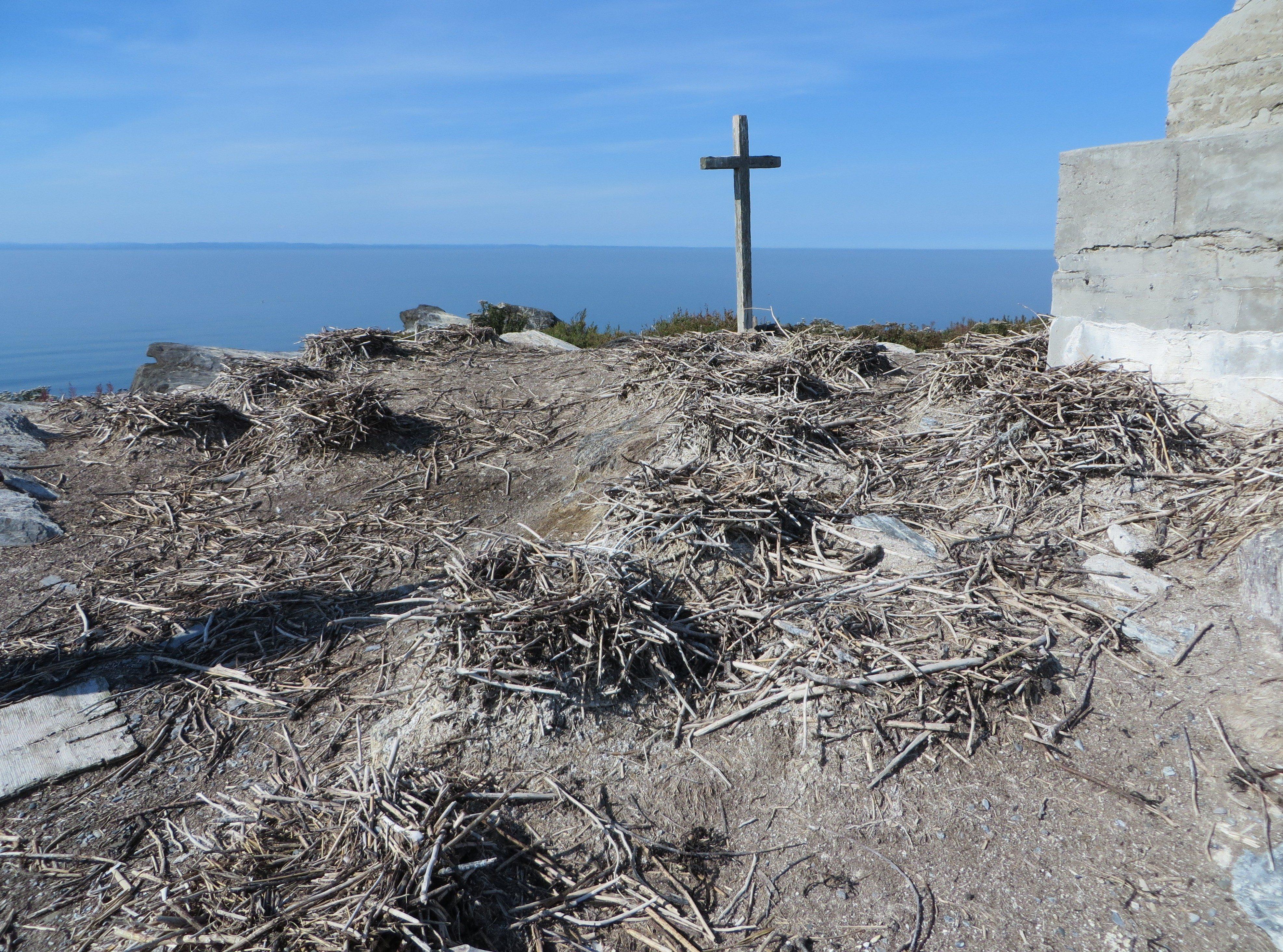 Nids de cormorans à aigrettes à la Razade d'en Haut au mois de septembre 2015 (Photo: Réhaume Courtois)