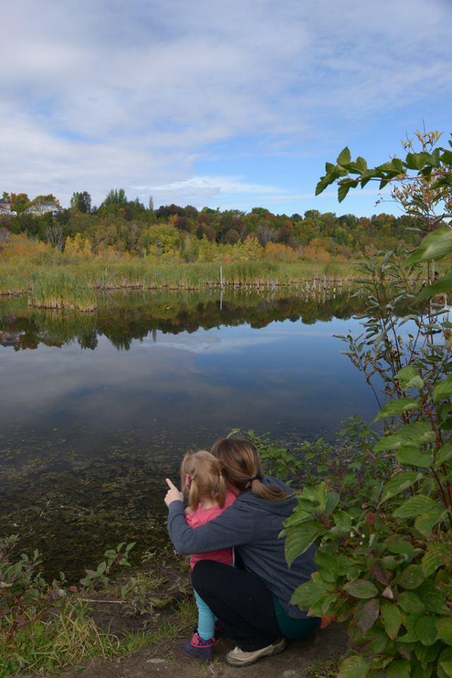 Un arrêt pour admirer la Réserve naturelle du Marais-Léon-Provancher reflétant les couleurs d'automne (Photo: Nelson Boisvert)