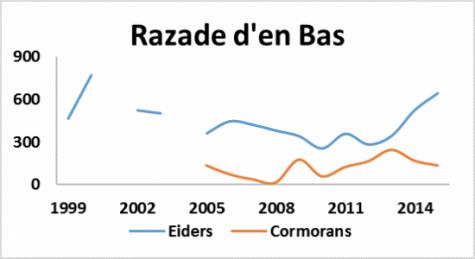 Graphique de la population d'Eiders et de Cormorans à la Razade d'en Bas