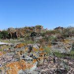 Le Parc naturel et historique de l'île aux Basques au mois de septembre 2016 (Photo: Réhaume Courtois)