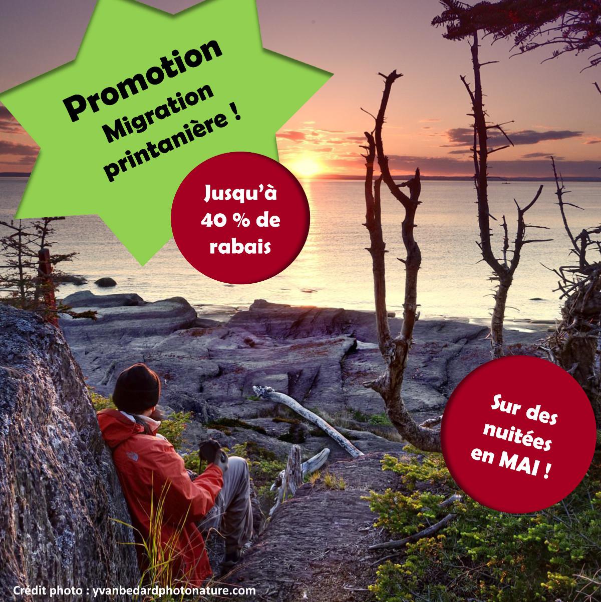 Affiche Promotion Migration printannière! Jusqu'à 40% de rabais sur des nuitées en mai! au Parc naturel et historique de l'île aux Basques