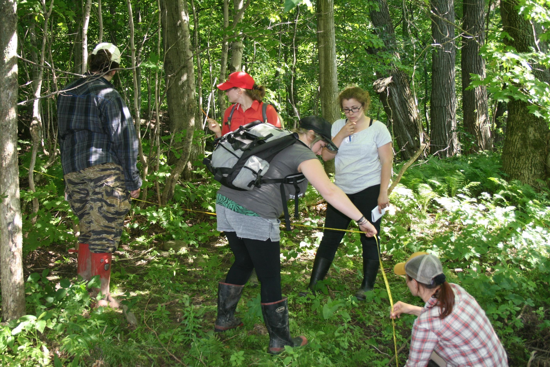 Formation sur les habitats humides / Bureau d'écologie appliquée (Photo: Audrey Lachance)