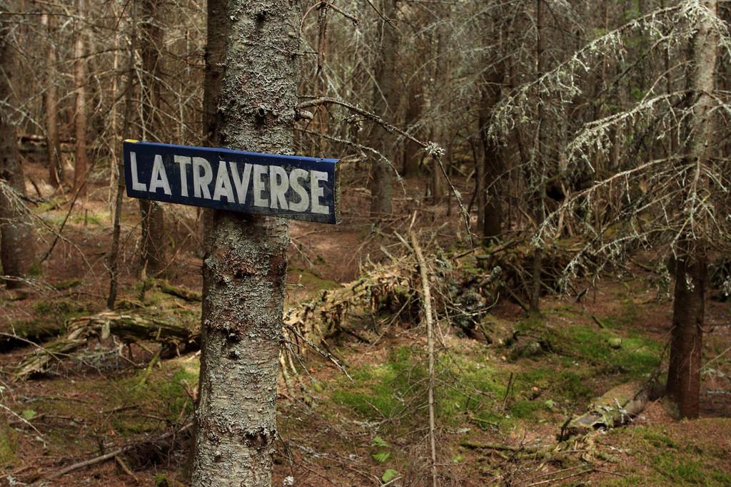 Sentier de la Traverse. Parc naturel et historique de l'Île aux Basques. Photo: Yves Déry.