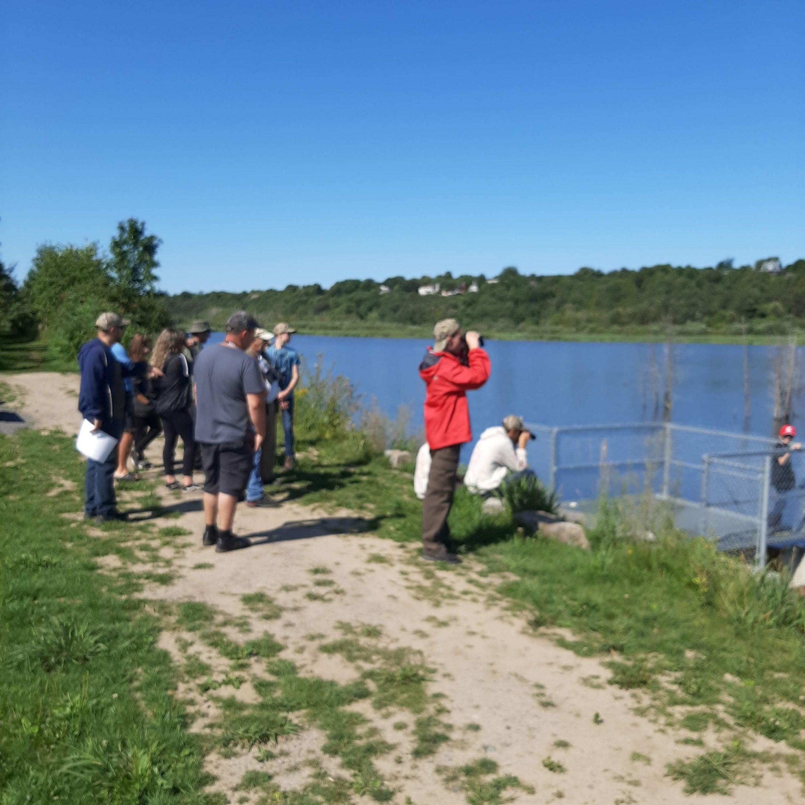 Observation des canards au marais Léon-Provancher, lors de la journée de la relève de jeunes chasseurs de sauvagine, le 25 août 2019. Photo : Pierre Lapointe.
