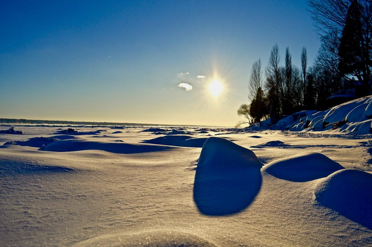 Le fleuve Saint-Laurent et ses battures, même glacées, peut être utilisé par plusieurs espèces en hiver : grand corbeau, harfang des neiges, goélands, etc.