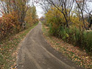Sentier aménagé pour les personnes à mobilité réduite au marais Provancher côté marais