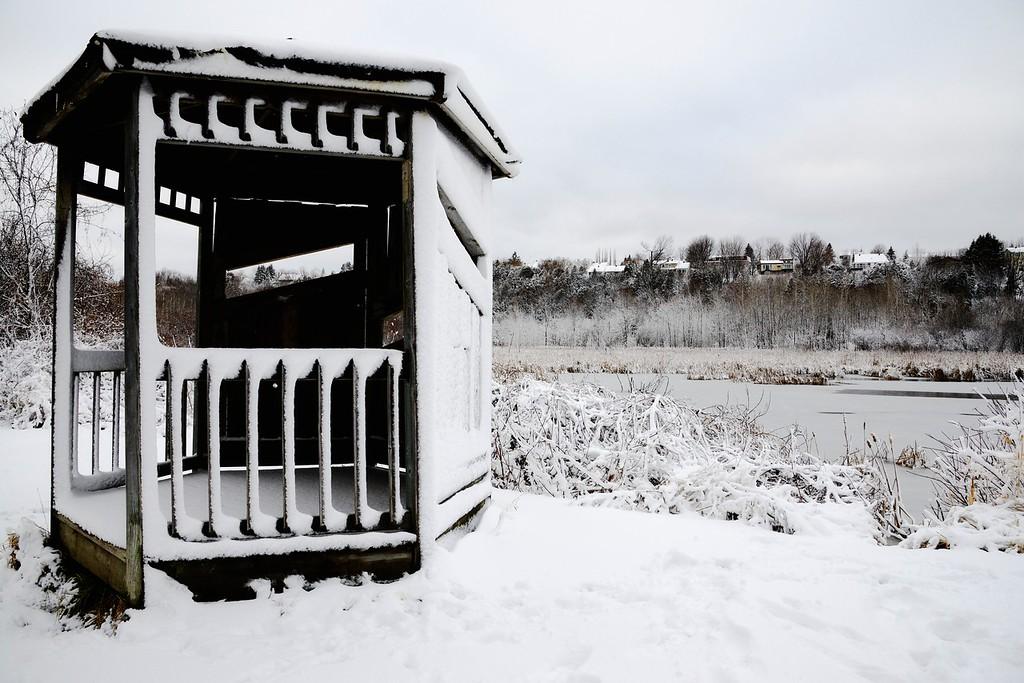 L'hiver offre un décor particulier aux visiteurs de la réserve naturelle du Marais-Léon-Provancher.