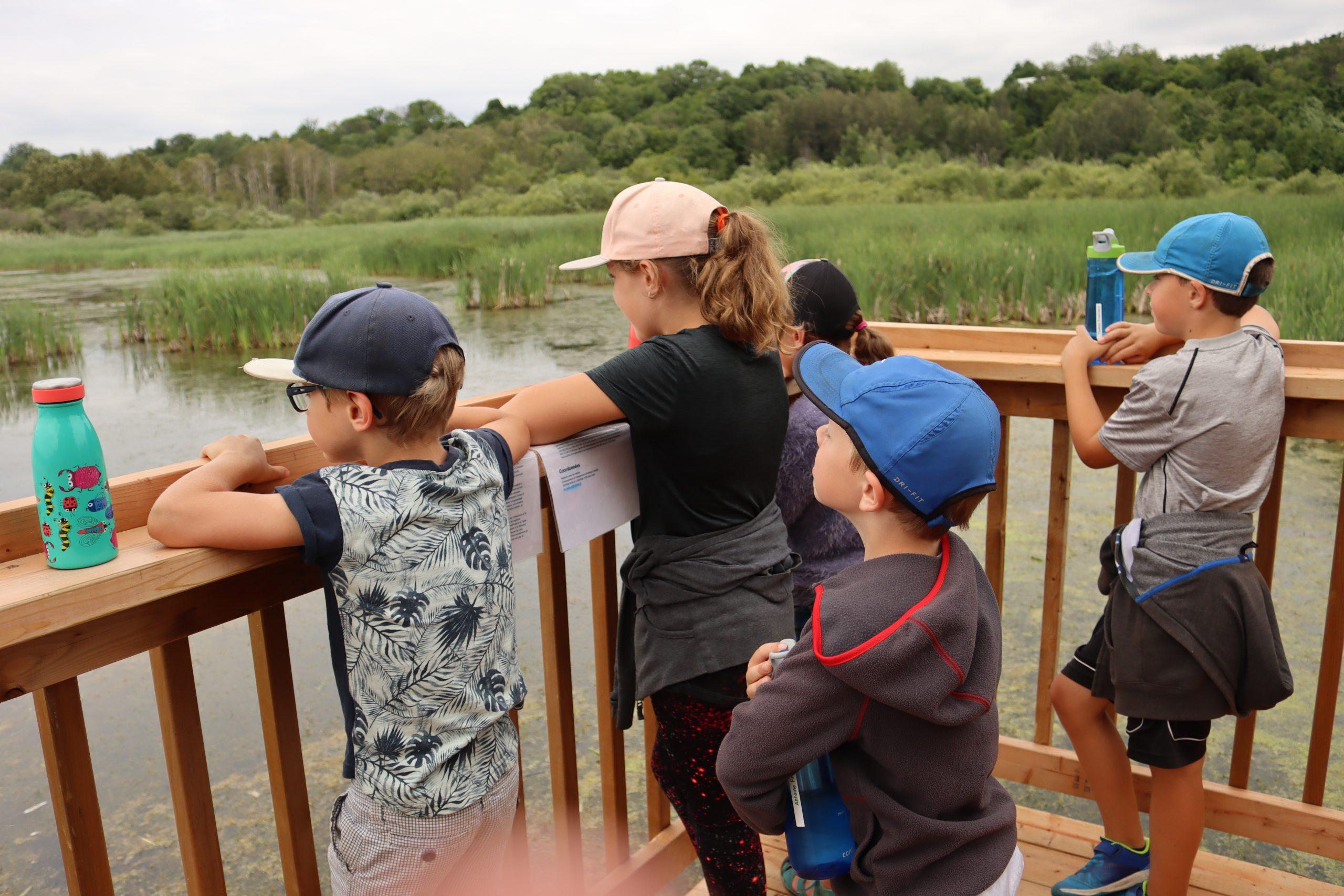 """Camp de jour de la Maison Léon-Provancher, juillet 2020. Les jeunes font un """"brin"""" d'observation à la plateforme est du marais Léon-Provancher."""