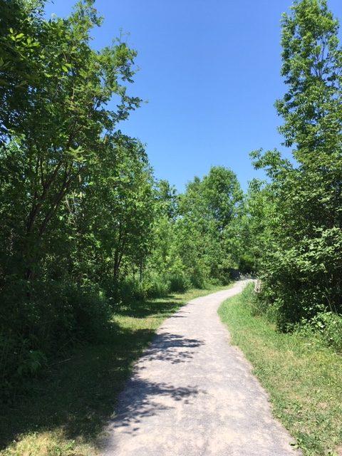 De nombreux sentiers pédestres sillonnent la réserve naturelle du Marais-Léon-Provancher. Ils sont accessibles en toute saison.