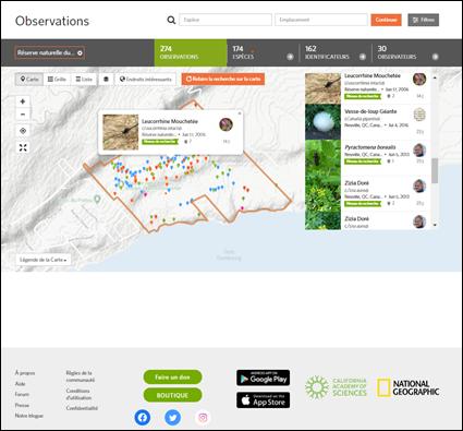 Une page type du Naturalist, montrant le territoire de la réserve naturelle du Marais-Léon-Provancher. Source : https://www.inaturalist.org/observations?place_id=168042.