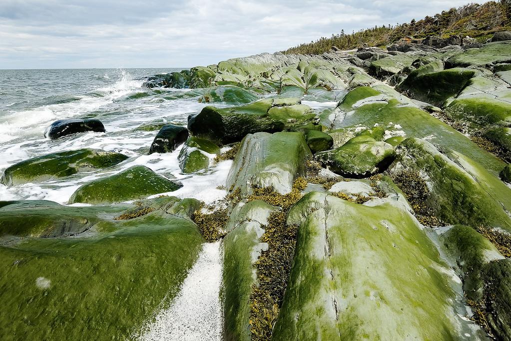 Une grève rocheuse battue par les vagues au parc naturel et historique de l'Île-aux-Basques. Photo : Pierre Matte.