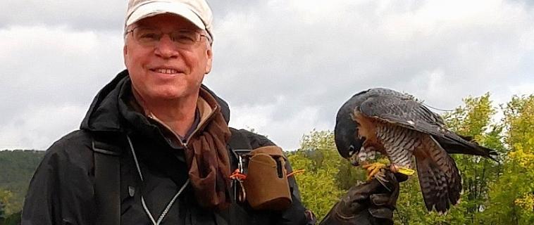 La fauconnerie : une façon singulière d'apprécier les oiseaux de proie