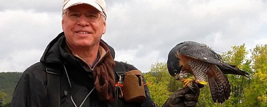 La fauconnerie, patrimoine de l'humanité,  une forme spécialisée d'ornithologie
