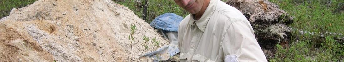 Evolution de la biosphère: que nous apprennent les sols?
