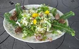 «La nature dans votre assiette» à la Forêt Montmorency