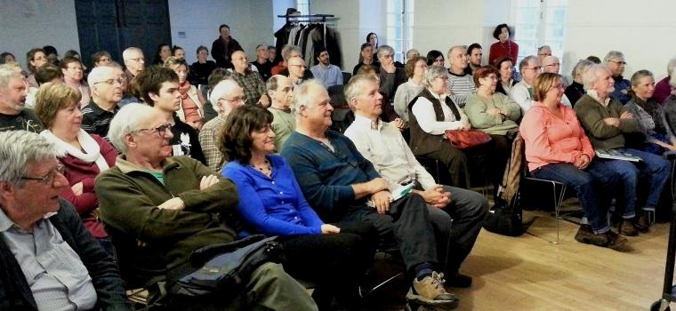 Ça continue de « brasser » pour les oiseaux marins au Québec