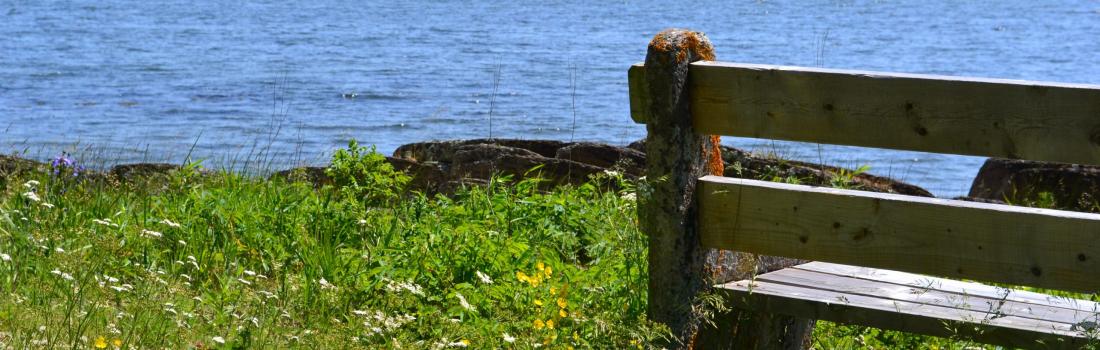 Promotion solstice d'été à l'île aux Basques!