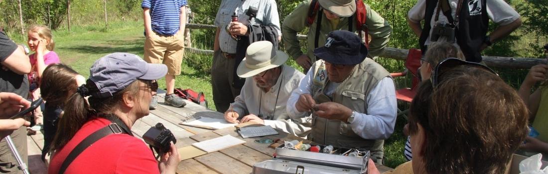 Baguage des oiseaux 2018 – Réserve naturelle du Marais-Léon-Provancher