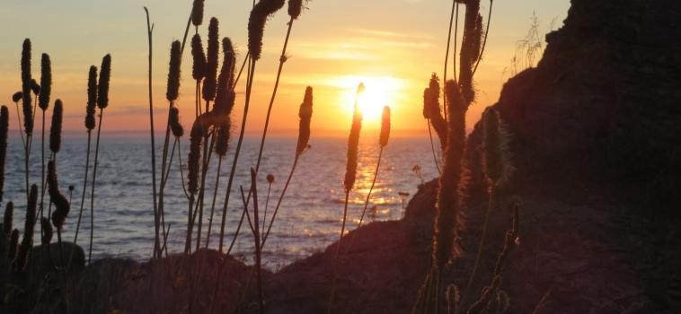 Réservations de chalets au Parc naturel et historique de l'Île-aux-Basques