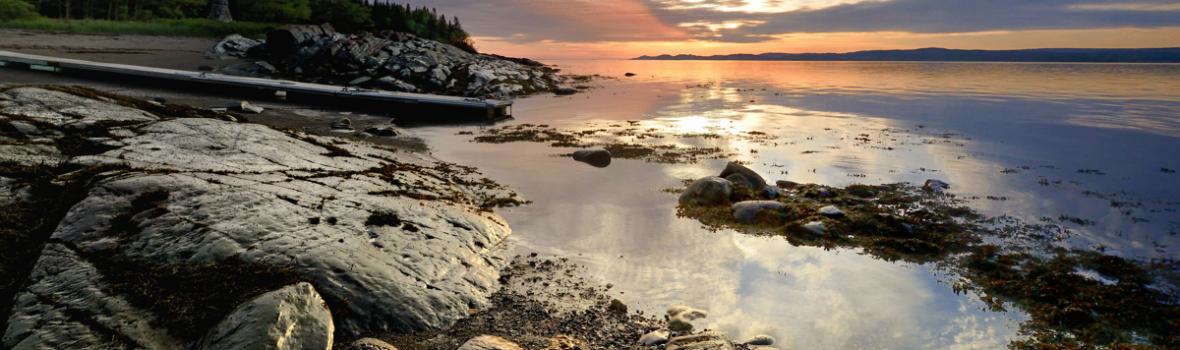 Séjours au Parc naturel et historique de l'Île aux Basques en 2017