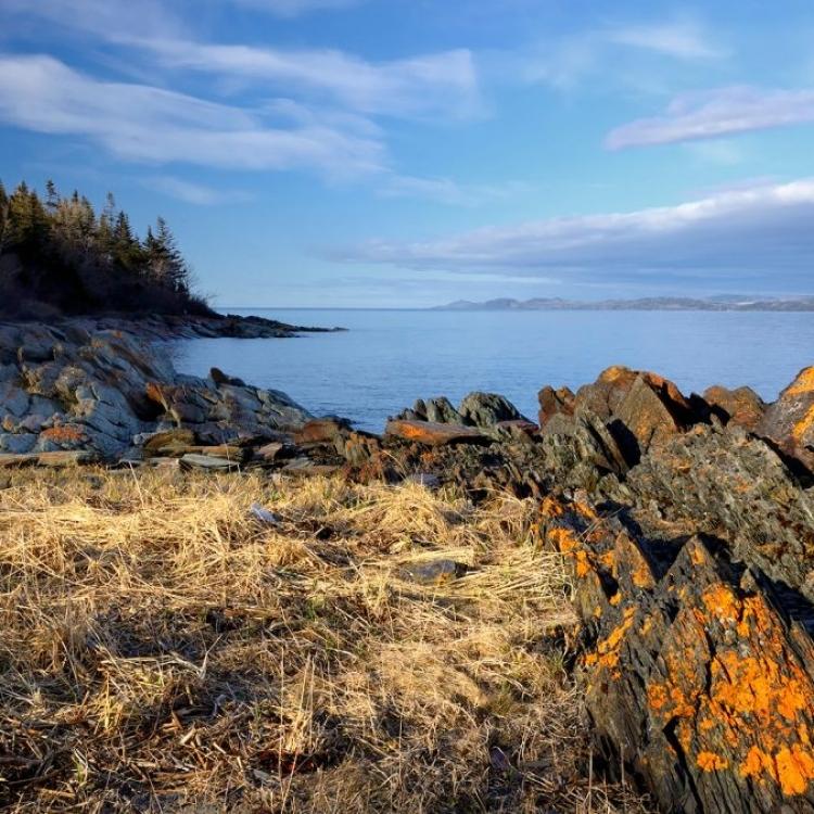 Le Parc naturel et historique de l'Île aux Basques (Photo: yvanbedardphotonature.com)