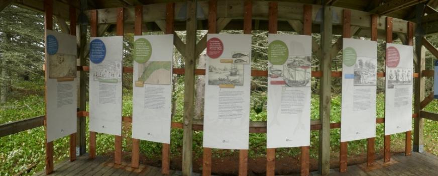 De nouveaux panneaux d'interprétation à l'île aux Basques