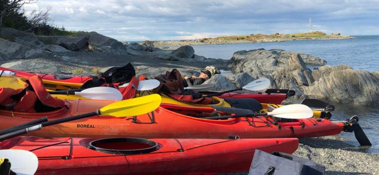 Une sortie en kayak de mer à l'île aux Basques