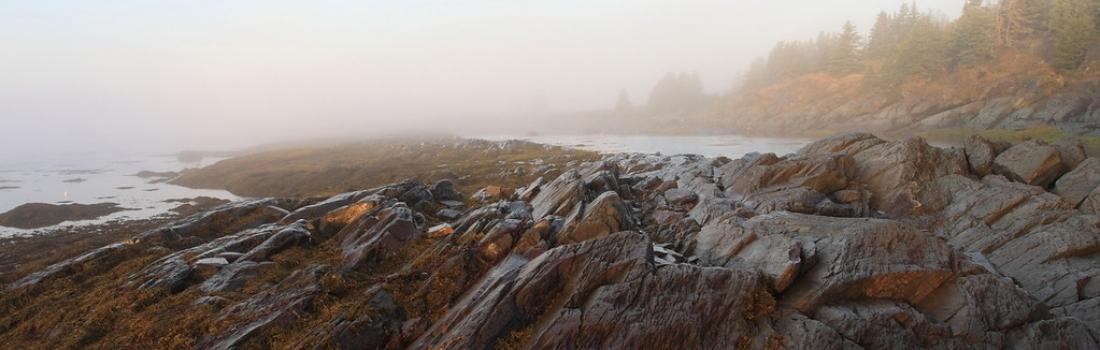 L'ouverture de la saison au Parc naturel et historique de l'Île aux Basques arrive à grands pas!