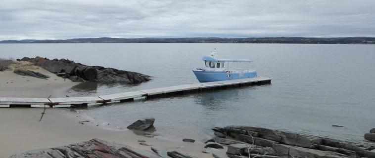 Réseau découverte du Parc marin du Saguenay–Saint-Laurent