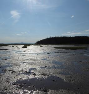 Île Dumais