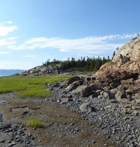Île Dumais au mois de juillet 2017 (Photo: Jean Tremblay)