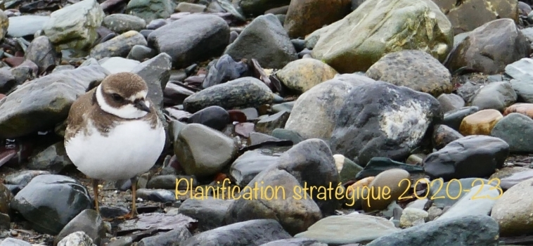 Planification stratégique 2020-2023