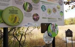 Inauguration des nouvelles infrastructures à la réserve naturelle du Marais-Léon-Provancher