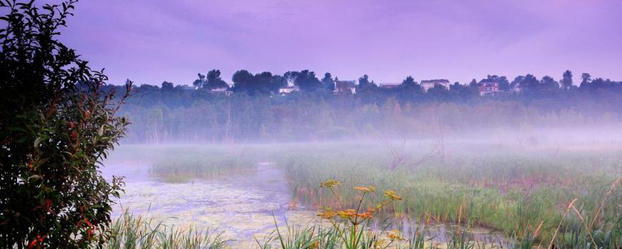 Une aide précieuse de la Fondation Hydro-Québec pour l'environnement