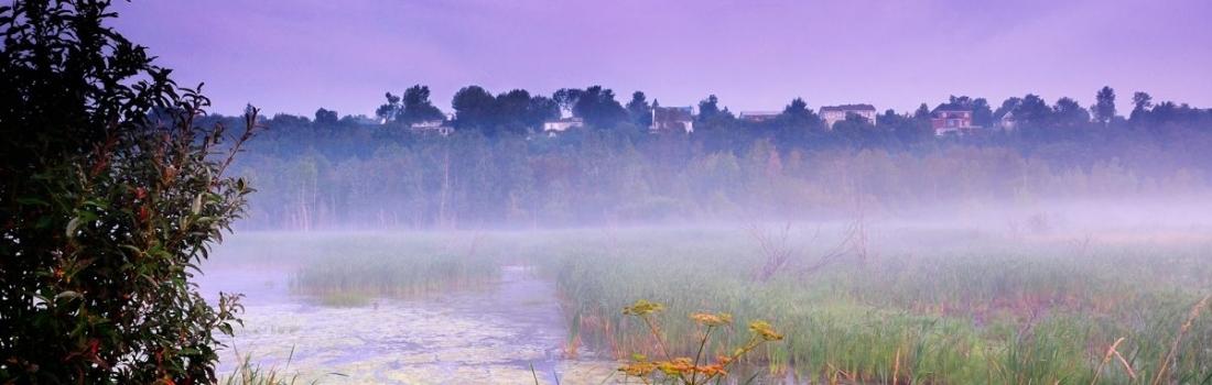 La fréquentation à la Réserve naturelle du Marais-Léon-Provancher en 2019