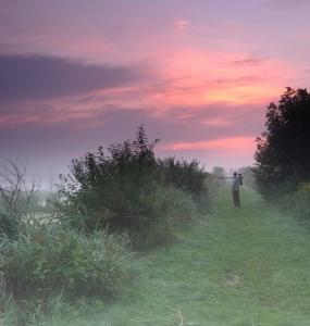 Brouillard Matinal à la Réserve naturelle du Marais Léon-Provancher (Photo: yvanbedardphotonature.com)