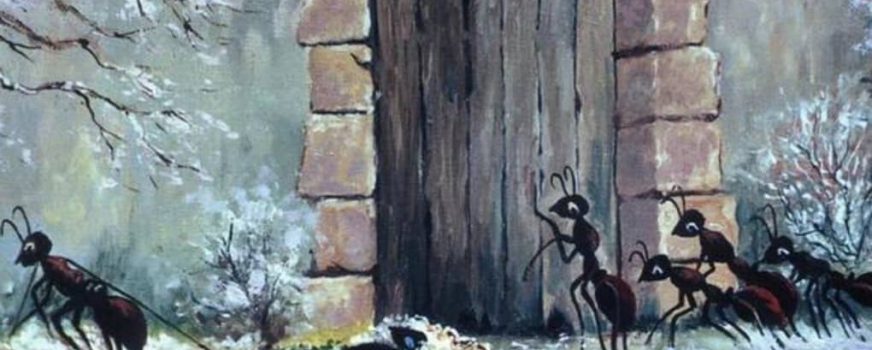Compte-rendu de la conférence sur les fourmis