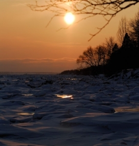 Un hiver à la Réserve naturelle du Marais-Léon-Provancher (Photo: yvanbedardphotonature.com)