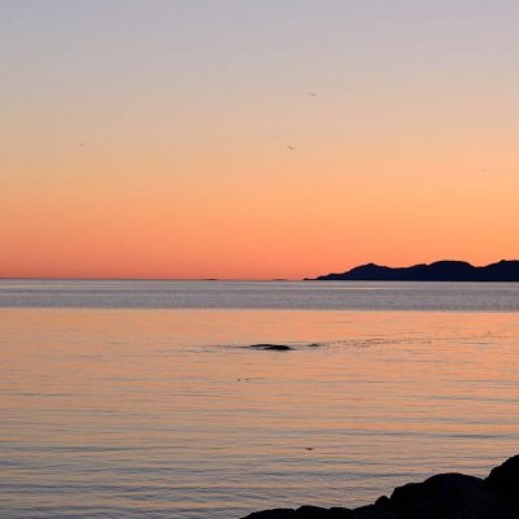 Coucher de soleil au Parc naturel et historique de l'île aux Basques (Photo: yvanbedardphotonature.com)