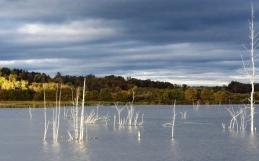 Niveau d'eau du marais Provancher