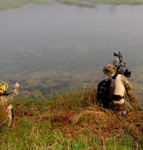 Safari photos à la Réserve naturelle du Marais-Léon-Provancher (Photo: yvanbedardphotonature.com)