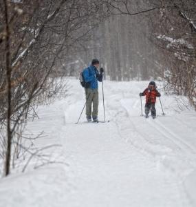 Ski de fond à la Réserve Naturelle du Marais-Léon-Provancher (Photo: yvanbedardphotonature.com)