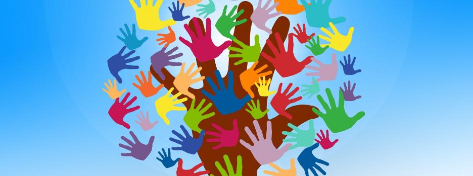 La Société Provancher recherche des bénévoles